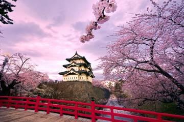Những địa điểm không thể bỏ qua khi đi du lịch Nhật Bản