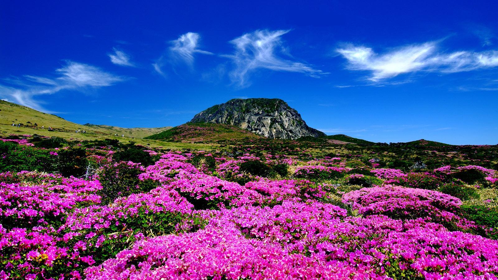 Những địa danh du lịch đẹp tại Nam Phi