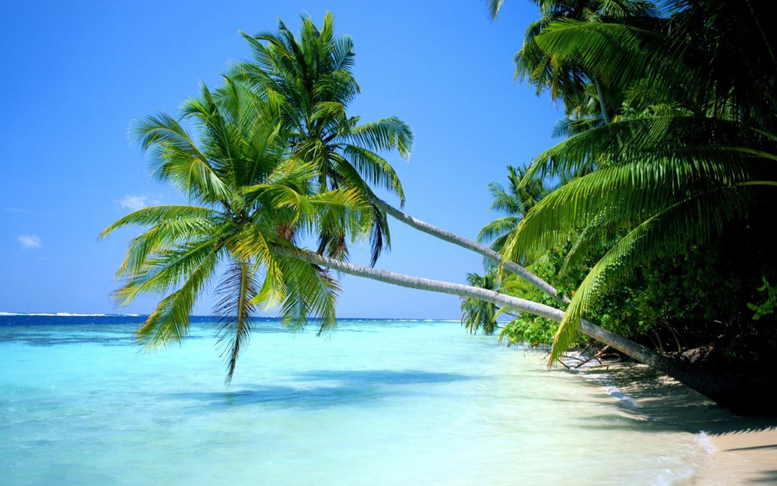 Top 9 địa điểm du lịch Bangladesh tuyệt đẹp không nên bỏ qua